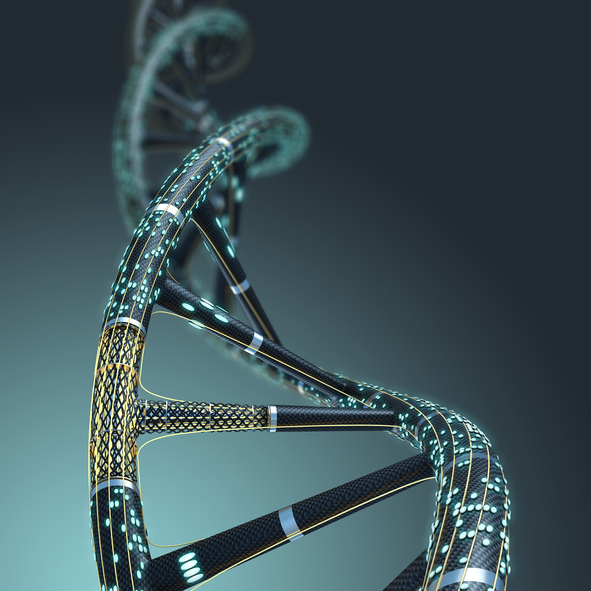 Artificial DNA molecule