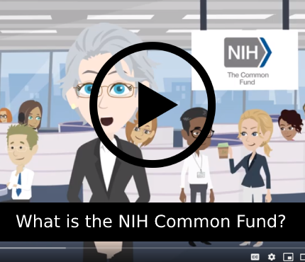 YouTube video that explains what the common fund is.