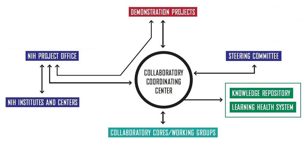 Diagram of the HCS Research Collaboratory