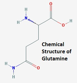 Chemical Structure of Glutamine
