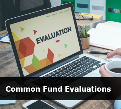 Common Fund Evaluations
