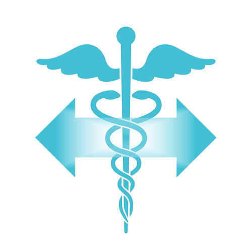 Caduceus with double-headed arrows