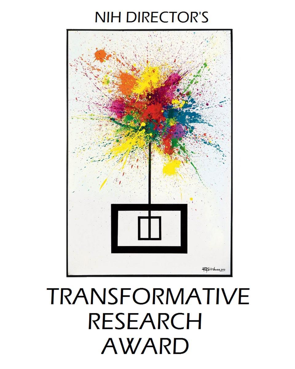 NIH Director's Transformative Research Award
