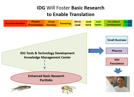 IDG Diagram
