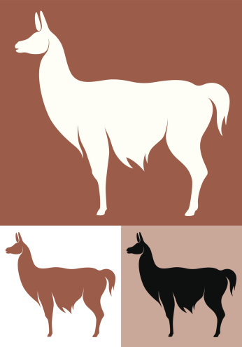 Llamas for Nanobodies