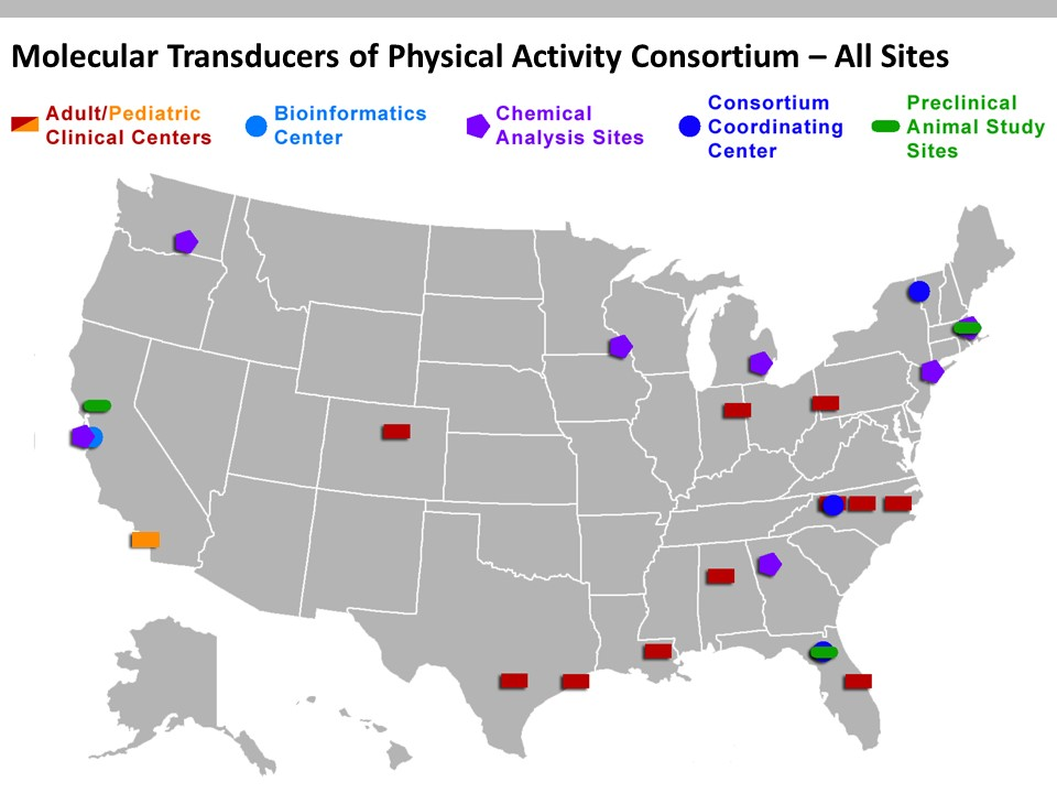 Map of the United States with targeted spots wih the locations of the various sites that make up the Molecular Transducers of Physical Activity Consortium