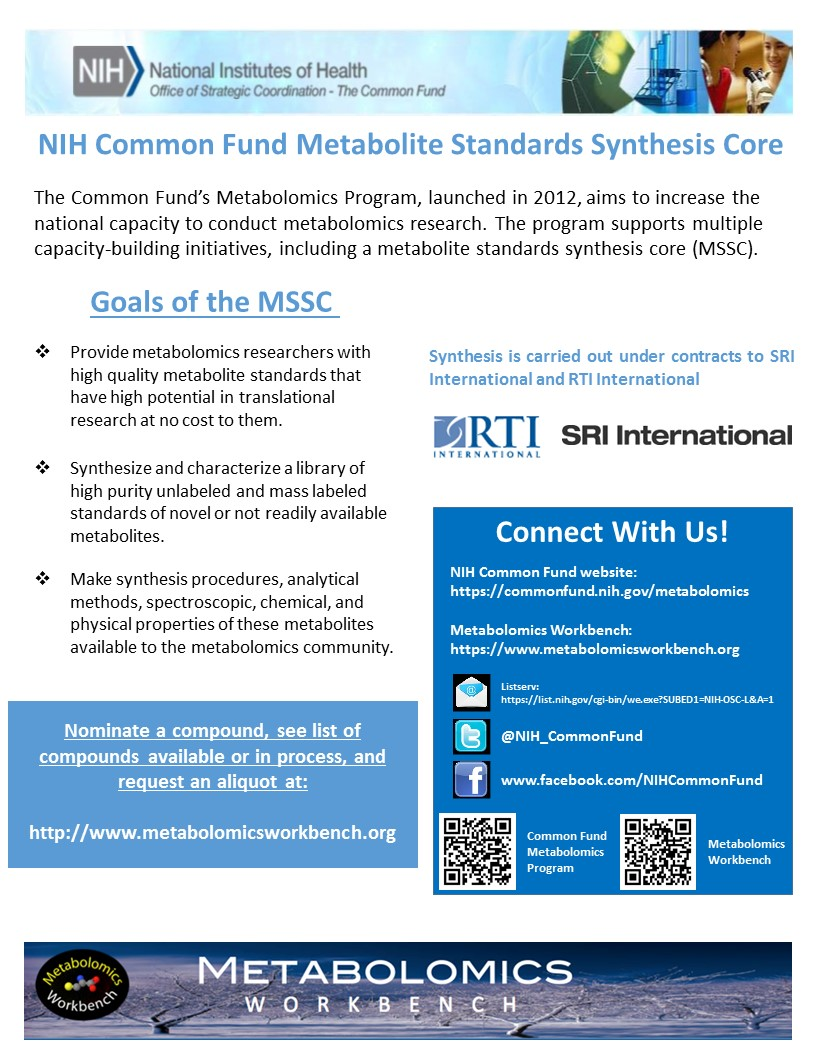 Standards Synthesis Flyer