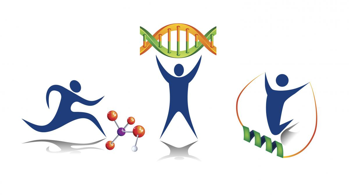 Molecular Tranducers graphic identity composed of figures performing activities with molecules, DNA, and RNA