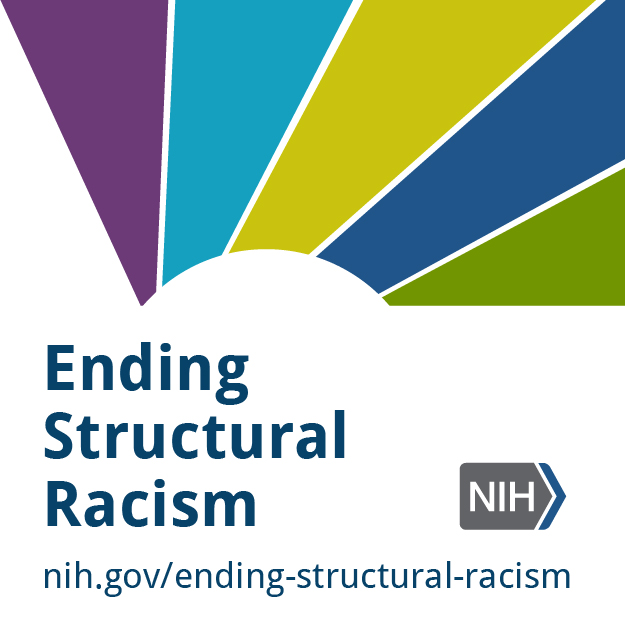 "Colored blocks around the text: ""Ending Structural Racism"""