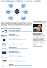Interdisciplinary Research Consortia