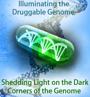 Illuminating the Druggable Genome