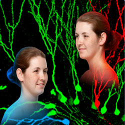 Identical twins are pictured in the foreground, while multi-colored neurons are depicted in the background