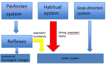 Reflexes, and the Pavlovian, habitual, goal-directed systems interact and can lead to conflict in the motor system leading to autonomic/physiological changes, approach/avoidance, or strong prepotent habits taking over.