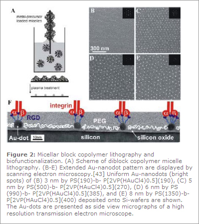 Figure 2: Micellar block copolymer lithography and biofunctionalization