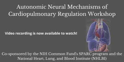 Autonomic Neural Mechanisms of Cardiopulmonary Regulation Workshop