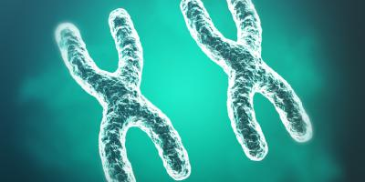 An image of chromosomes on scientific background