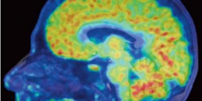 science translational medicine image