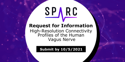 """Image showing the SPARC logo and text reading """"Request for Information. High-Resolution Connectivity Profiles of the Human Vagus Nerve. Submit by 10/5/2021"""