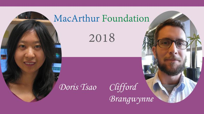2018 MacArthur Fellows Doris Tsao and Clifford Brangwynne
