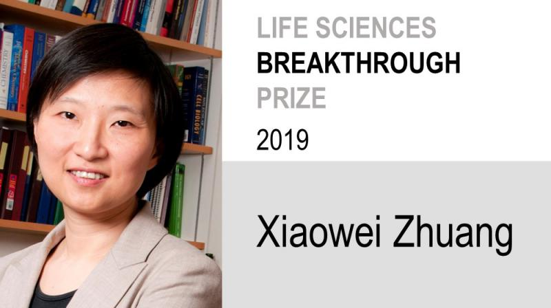Xiaowei Zhuang 2019 Life Sciences Breakthrough Prize