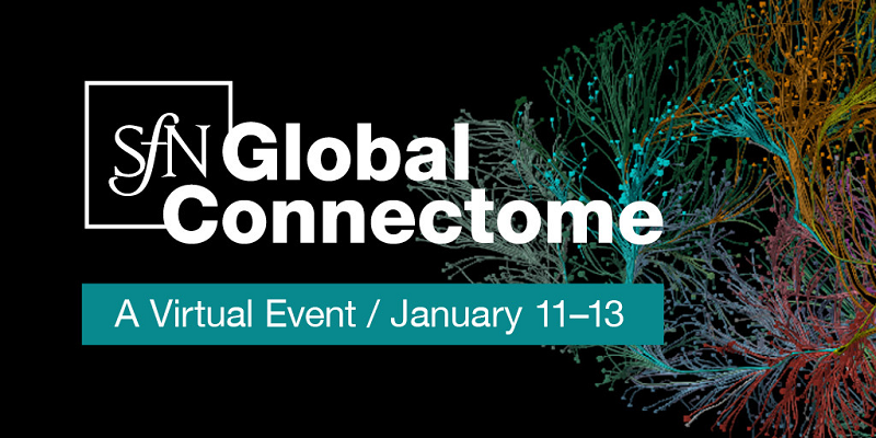 Rainbow colored lines and dots with text superimposed that reads: SfN Global Connectome a Virtual Event January 11-13