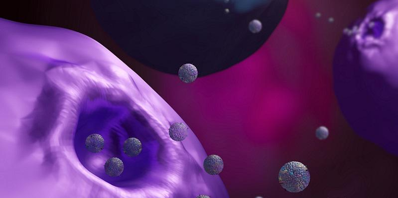 Cells secreting exosomes