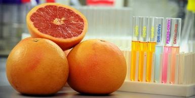 grapefruit nano
