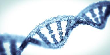 Close up of DNA