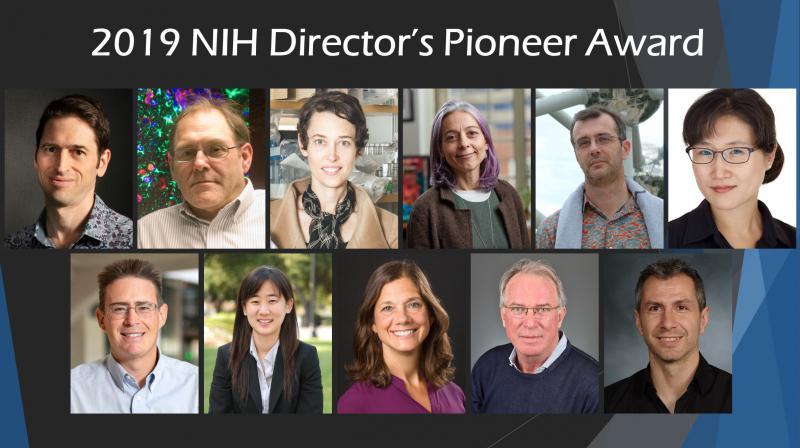Pioneer 2019 awardees