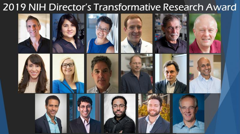 2019 Transformative Research awardees