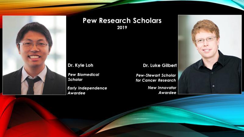 HRHR Gilbert and Loh--Pew Scholars