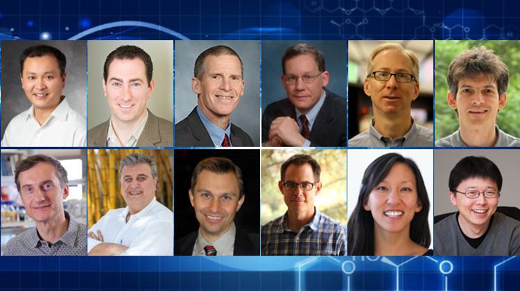 2017 NIH Director's Pioneer awardees