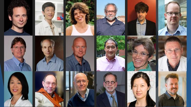 Collage of 2018 NIH Director's Transformative Research Award recipients