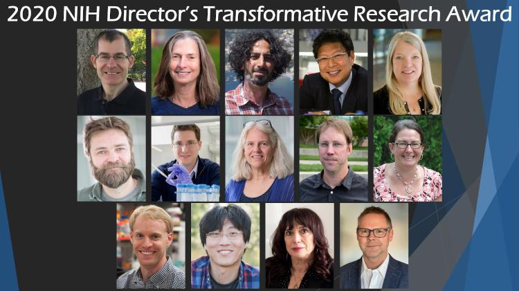 2020 Transformative Research Award Collage