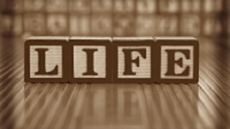 building blocks spell life