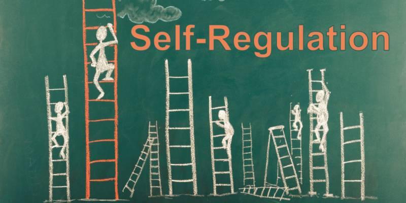 SOBC_Image_Ladders_SelfRegulation_wide.png