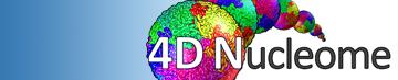 4D Nucleome